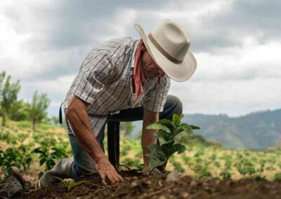 Agricultor San Carlos